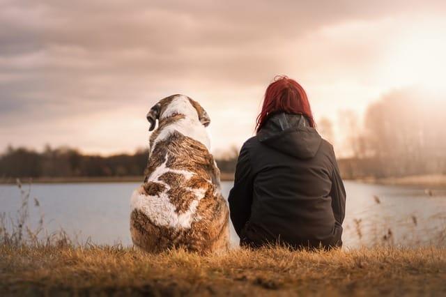 Mit meinem Hund am See sitzen
