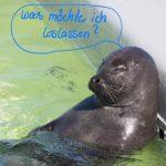 Read more about the article Die Liste: Loslassen was nicht guttut