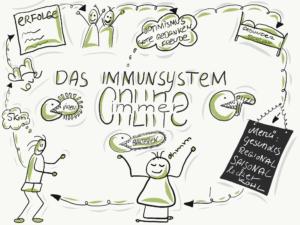 Zirkeltraining fürs Immunsystem